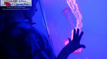 Ripley's Aquarium Was A Great Experience #FamilyTravel