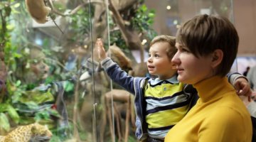 10 Great Museum Programs for Special Needs Children