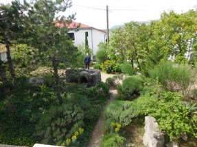 Apartman Jelena 4 - Pogled s terase i vrt