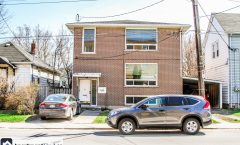 48 Stanley Street #3 (Kingston) - 1250$