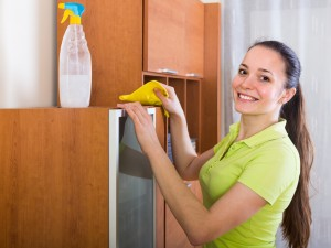clean, apartment living, cleaning supplies