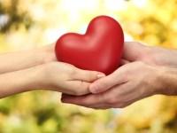 14/08 - Dia do Cardiologista