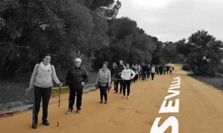 Actividades en Sevilla, parte 1