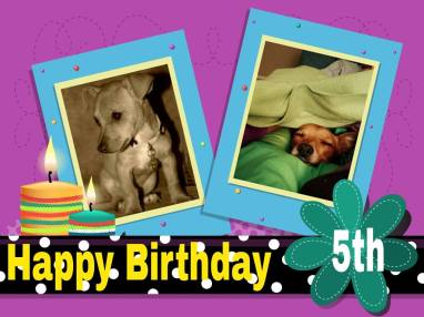 The birthday invitation my Mom made for my fifth birthday March 12, 2015