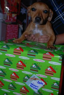 My first Christmas 2010
