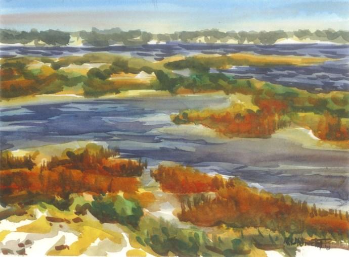 Wetland Bright Light Navarre