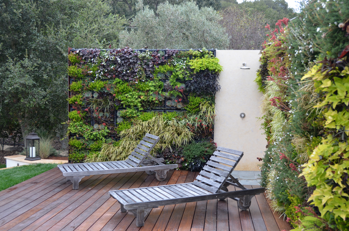 Living walls!   apdw blog on Green Wall Patio id=60671