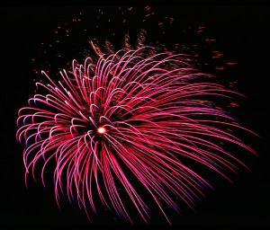 Fireworks display in sky