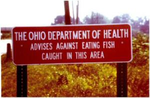 Board of Health Sign Warning Against Eating Fish