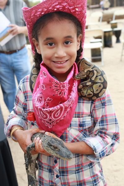 Girl with friendly boa constrictor at Phoenix Herpetological Society's exhibit. (Courtesy of Dennis Liddell.)