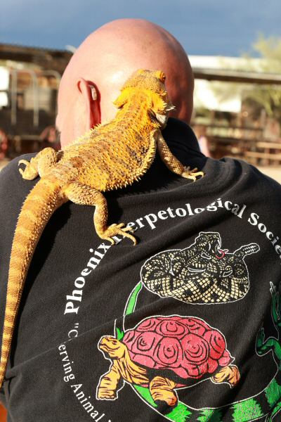 Reptiles have the back of this Phoenix Herpetological Society volunteer. (Courtesy of Dennis Liddell.)