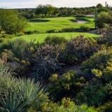 The Tale of Two Desert Courses