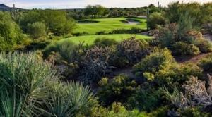 Desert Forest Golf Course