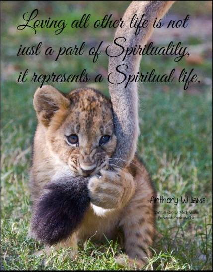 Loving all other life is not just a part of spirituality, it represents a spiritual life.
