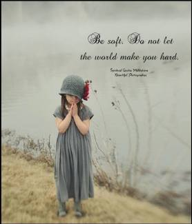 Be soft. Do not let the world make you hard. Do not let pain make you hate. Do not let the bitterness steal your sweetness. Take pride that even though the rest of the world may disagree, you still believe it to be a beautiful place.