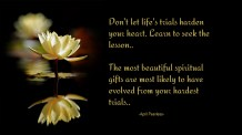Don't let life's trials harden your heart. Learn to seek the lesson. The most beautiful spiritual gifts are most likely to have evolved from your hardest trials. ~April Peerless