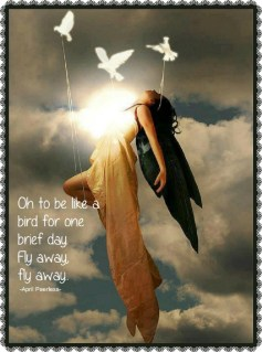 Oh to be like a bird for one brief day. Fly away, fly away. ~April Peerless