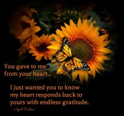 You gave to me from your heart. I just wanted you to know my heart responds back to yours with endless gratitude. April Peerless