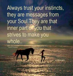 Always trust your instincts, they are messages from your Soul. They are that inner part of you that strives to make you whole. ~Unknown