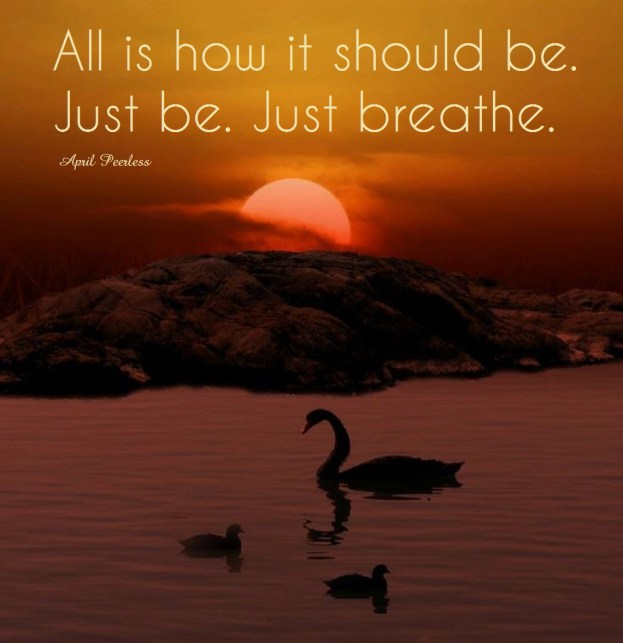 When I look to nature I hear our creators voice whisper, ''Be still and just be in this moment.'' In this very moment a blessing comes forth with a peaceful vibration that resides in the silence. All is how it should be. Just be. Just breathe. ~April Peerless