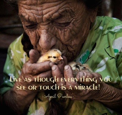 Live as though everything you see or touch is a miracle, because it is! Care for others as if they were truly a child of your Creator, because they are. April Peerless