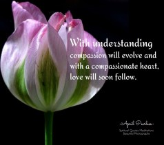 Yes, it really is time to realize our connection with all beings and nurture our compassion by understanding our differences. With understanding compassion will evolve and with a compassionate heart, love will soon follow. April Peerless