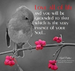Love all of life and you will be grounded to that which is the very essence of your Soul. April Peerless