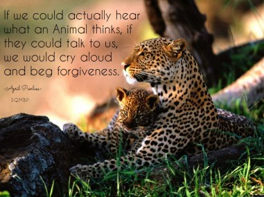 If we could actually hear what an Animal thinks, if they could talk to us, we would cry aloud and beg forgiveness... April Peerless