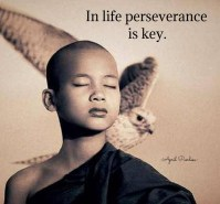 We must never be defeated by anything or anyone. In life perseverance is key. April Peerless