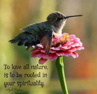 All of the smallest wonders we experience in our lives, should make us realize just what a magnificent being we truly must be. To love all nature is to be rooted in our spirituality. A.Peerless
