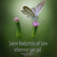 Leave foot prints of love