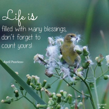 Life is filled with many blessings. Don't forget to count yours! April Peerless