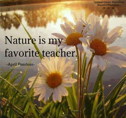 Nature is my favorite teacher. I have learned more important things about life from nature than I ever did from school. April Peerless