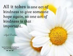 All it takes is one act of kindness to give someone hope again, so one act of kindness is that important.. April Peerless
