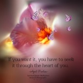 Decide you want to grow spiritually, and then honor that decision.If you want it, you have to seek it through the ''heart of you.'' April Peerless