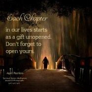 We cannot overcome the last chapter of our life, until we stop putting energy into it. Each chapter is a different level of wisdom, a new beginning and more life-lessons. Each chapter starts as a gift unopened. Don't forget to open yours. April Peerless