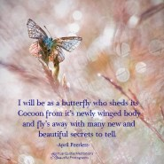 Do not judge me for who I was or even for who I am now because I am bound to evolve worldly and spiritually up until my body dies.Then I will be as a butterfly who sheds its Cocoon from it's newly winged body and fly's away with many new and beautiful secrets to tell. April Peerless