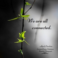 In the silence, I can feel the love of our Creator. That which is a part of me. That which is a part of you. We are all connected. April Peerless