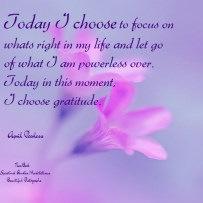 Today I choose to focus on whats right in my life and let go of what I am powerless over. Today in this moment, I choose gratitude. A.Peerless