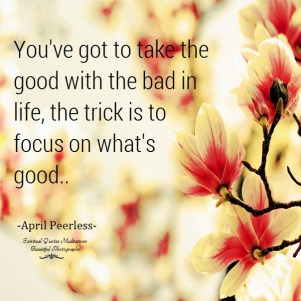 You've got to take the good with the bad in life, the trick is to focus on what's good. A.Peerless