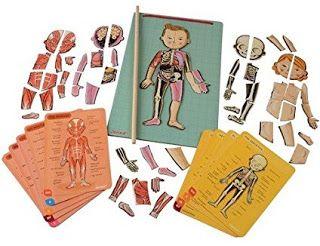 Juego de anatomía Bodymagnet