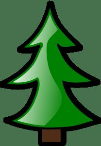 conifer-152063_640