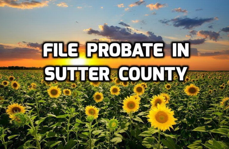 file probate in sutter county
