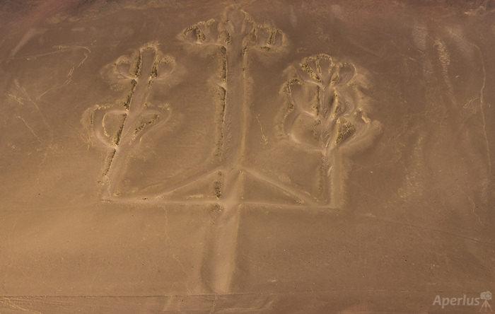Candelabra - Geoglyph in Paracas, Peru