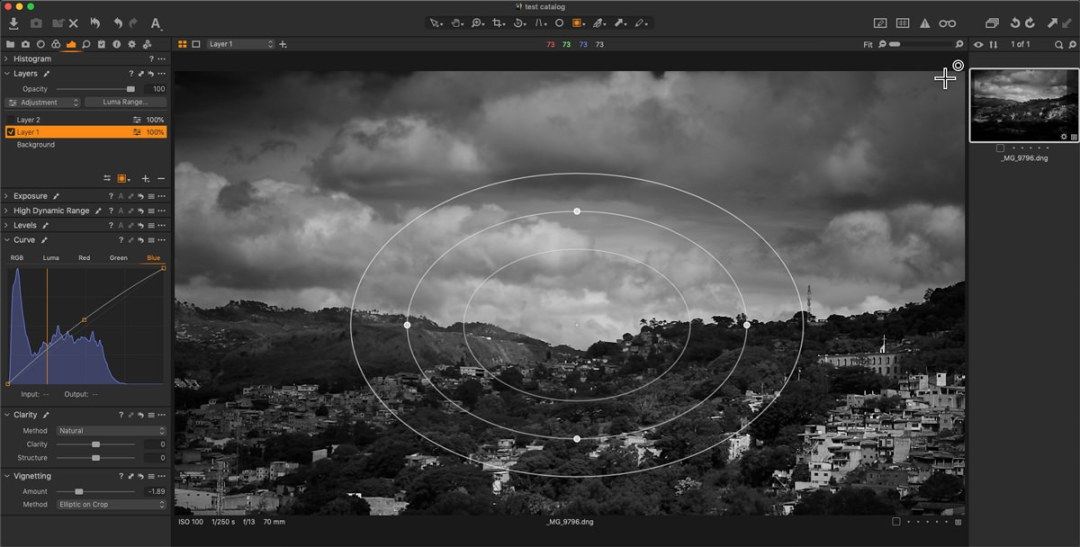 capture one blue curve and radial mask
