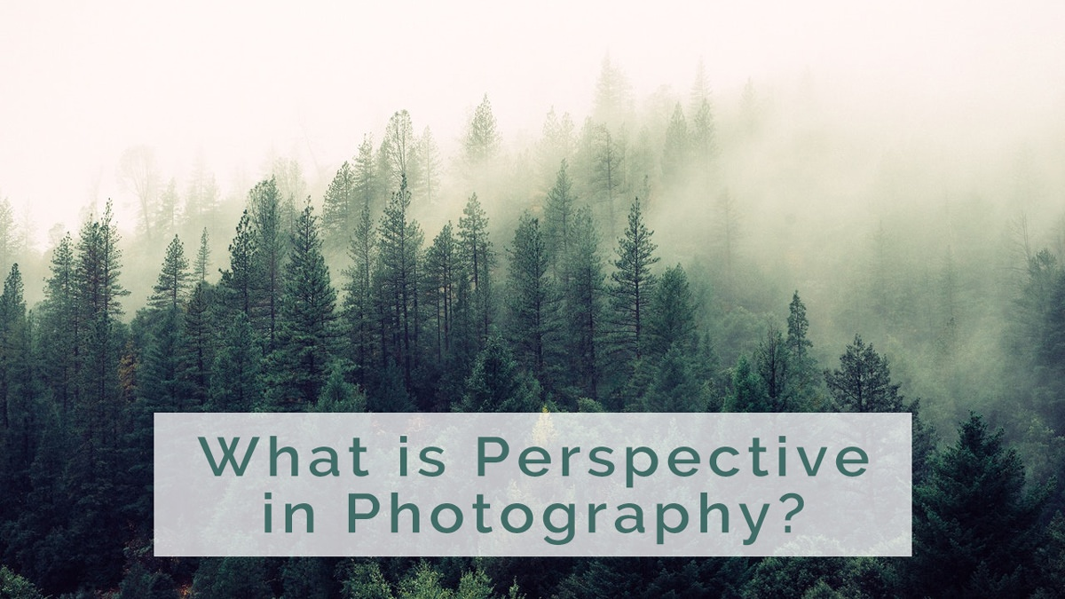 What is Perspective in Photography? Tips on How to Use Perspective