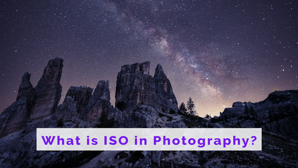 What is ISO in Photography? Exposure, Noise, & Detail