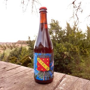 brunel bieres american ipa