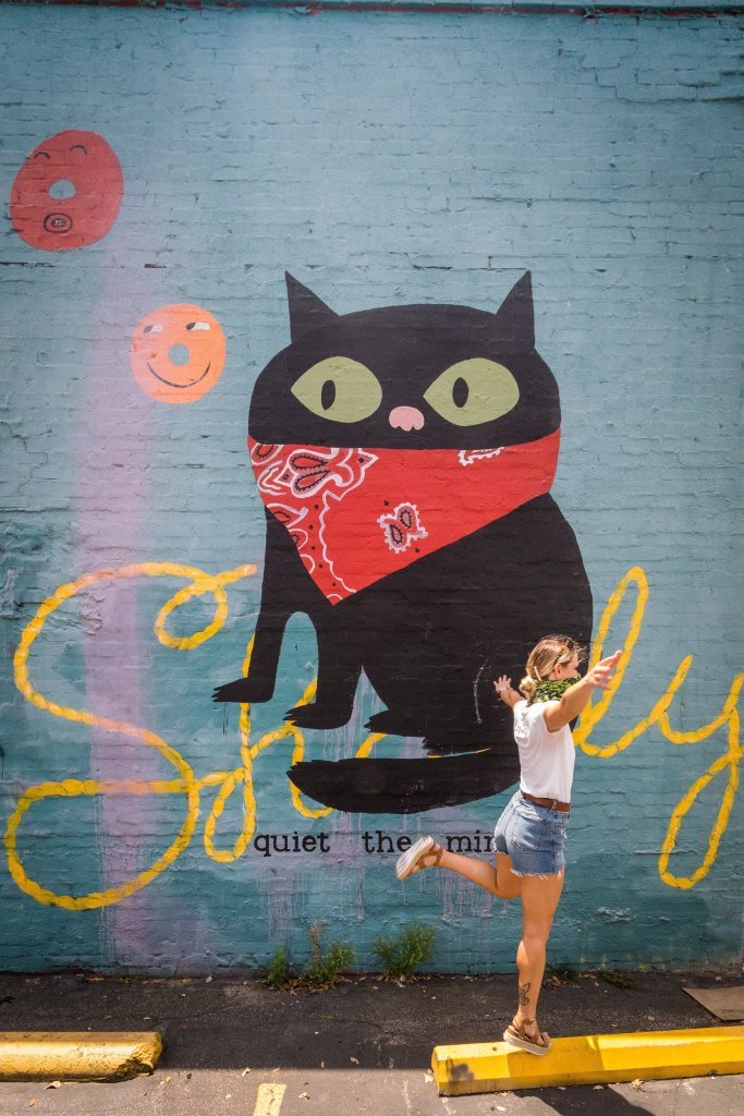 cat with a bandana mural