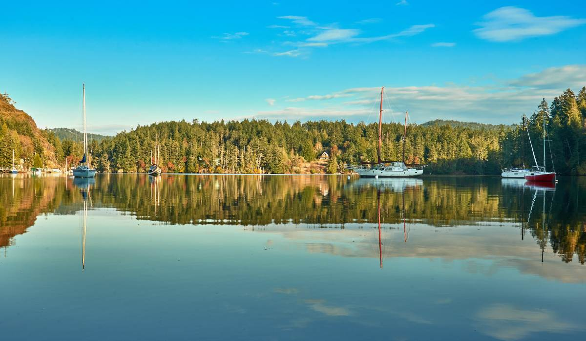 Reflections - East Sooke